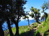 Hike sentiero degli Dei 8